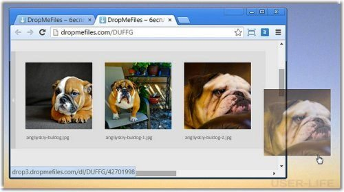 drop-me-files-6/3040753_500x280xdropmefiles6_jpg_pagespeed_ic_pwQu9sBpUF (500x280, 31Kb)