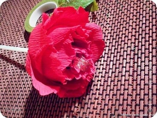 Роза с чупа чупсом6 (520x390, 191Kb)