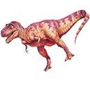 Тираннозавр (130x130, 15Kb)