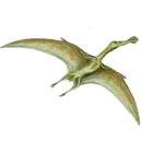 Птерозавр (130x130, 8Kb)