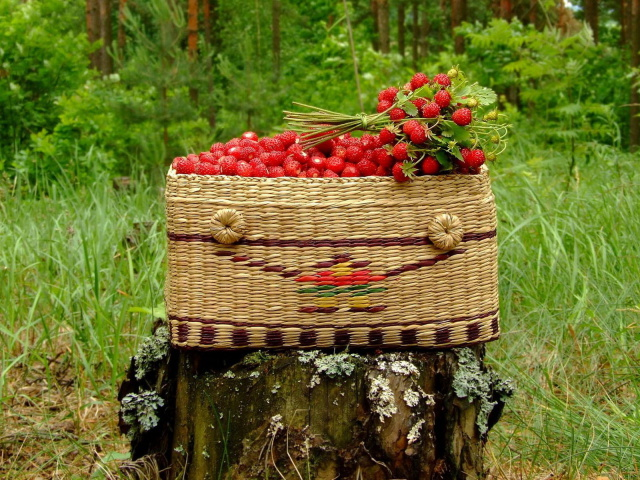 99634266_Food_Berries_and_fruits_and_nuts_Strawberries_in_basket_032196_29 (640x480, 195Kb)