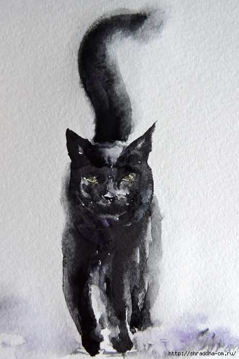 акварель, кот, от Shraddha (1) (466x700, 240Kb)