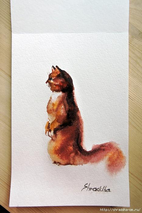 акварель, кот рыий, от Shraddha (1) (466x700, 245Kb)