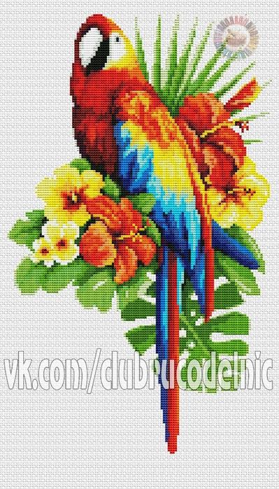 Fairy tale parrot (399x700, 275Kb)