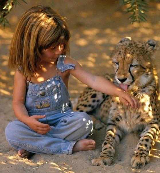 Девочка с африканскими животными2 (558x604, 316Kb)