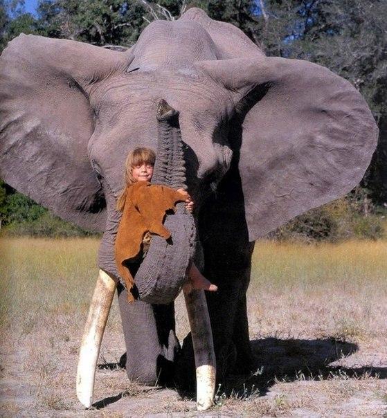 Девочка с африканскими животными4 (559x604, 303Kb)