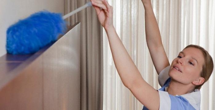 Norveg производится чем протирать мебель чтобы не садилась пыль Размер 44-46
