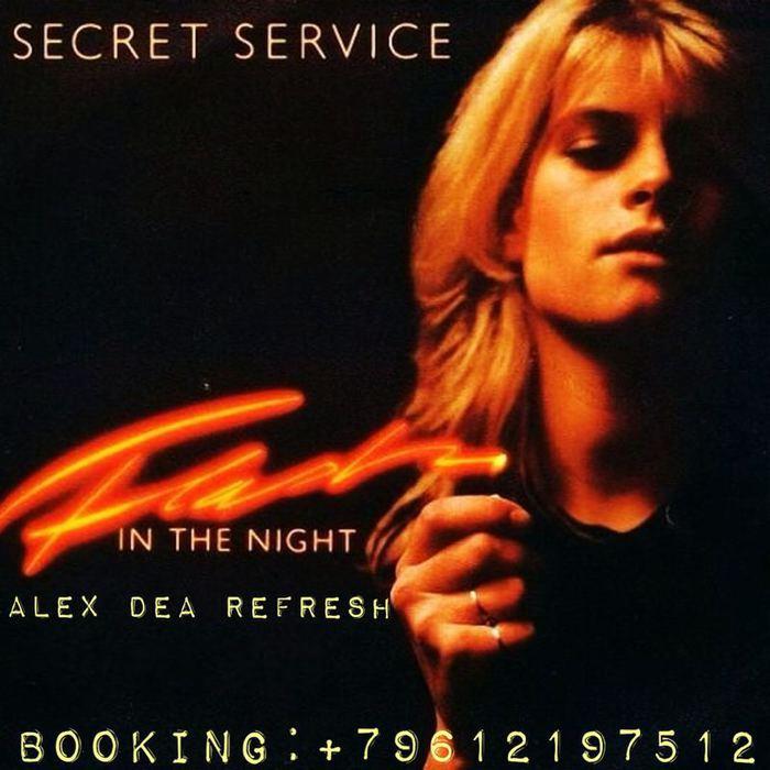 5291141_Flash_In_The_Night__Secret_Service (700x700, 59Kb)