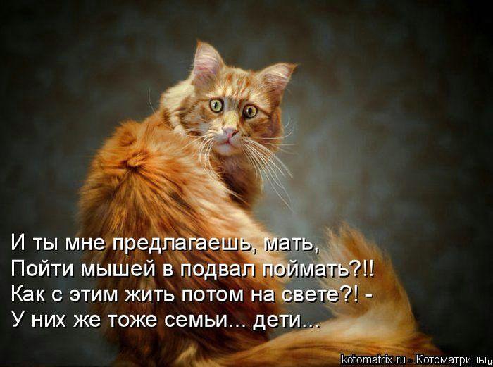 1435869325_13 (700x521, 267Kb)