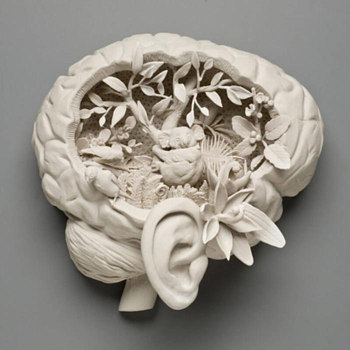 Оригинально! Наш мозг (700x700, 460Kb)
