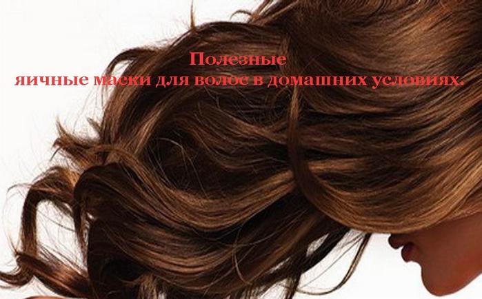 2835299_Poleznie_yaichnie_maski_dlya_volos_v_domashnih_ysloviyah_ (700x434, 207Kb)