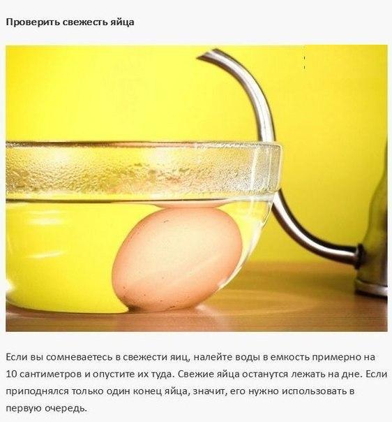 10 кулинарных советов9 (562x604, 190Kb)