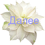 5369832_0_11391e_efdb605c_S (150x148, 35Kb)