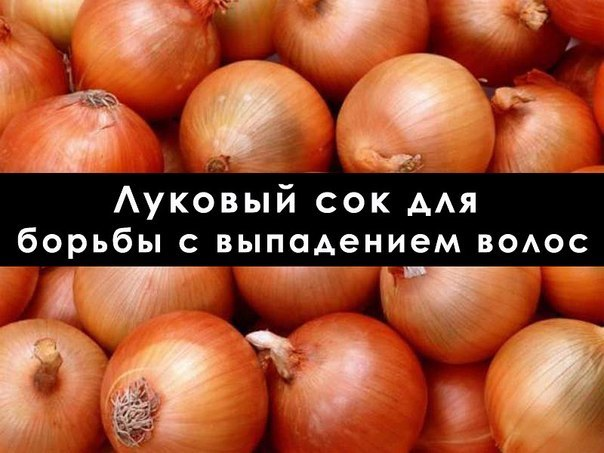 4208855_1LltQ6gNX9c (604x453, 58Kb)