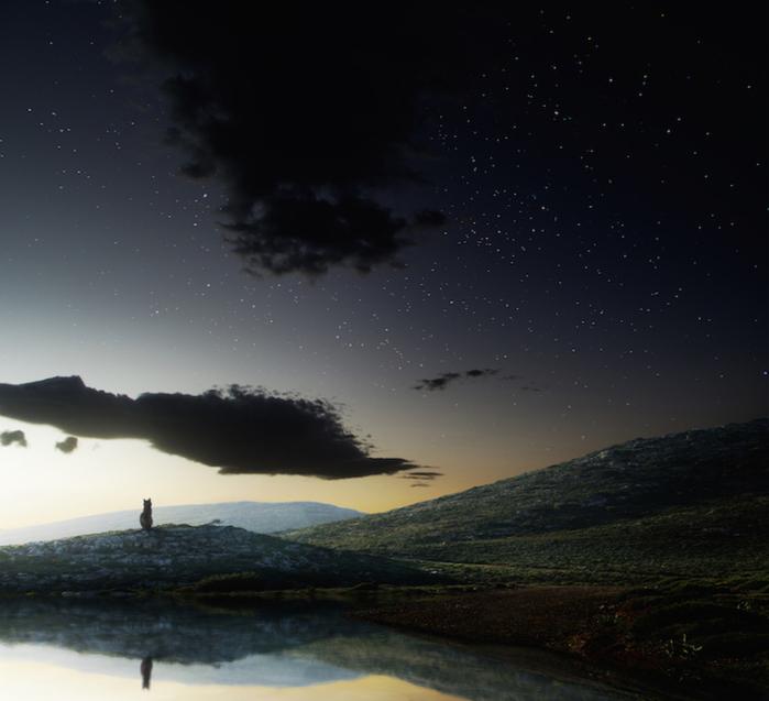 фантастический миром фотохудожника,  Джорджа Христакис4 (700x637, 345Kb)