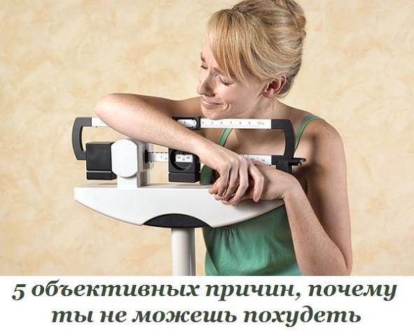 5761439_image_1_ (591x480, 63Kb)