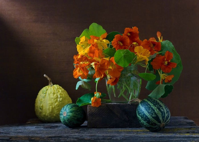 114762020_autumn_still_life_12 (699x501, 89Kb)
