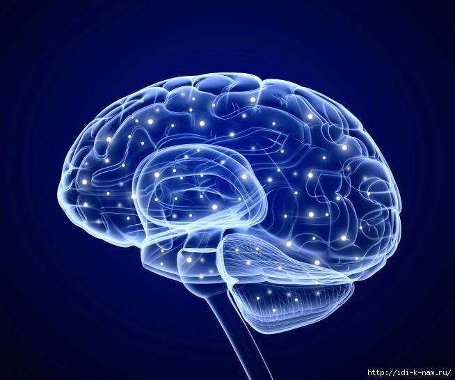 что такое апракси, где лечат апраксию, кто лечит апраксия, записаться на приём кневрологу в Москве, хороший невролог в Москве, /1436848709_524bc8d9748d2 (654x546, 124Kb)