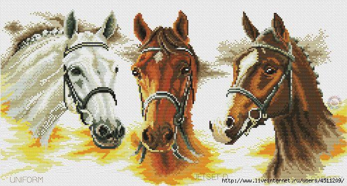 Drie paarden (700x374, 238Kb)