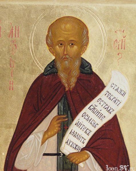 Прп Антоний Сийск (476x600, 57Kb)