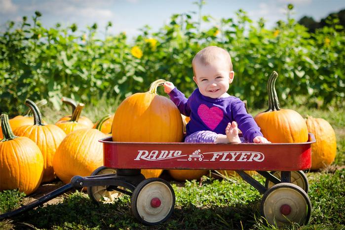 Шаблон для фотошопа – маленький мальчишка фермер (700x466, 438Kb)