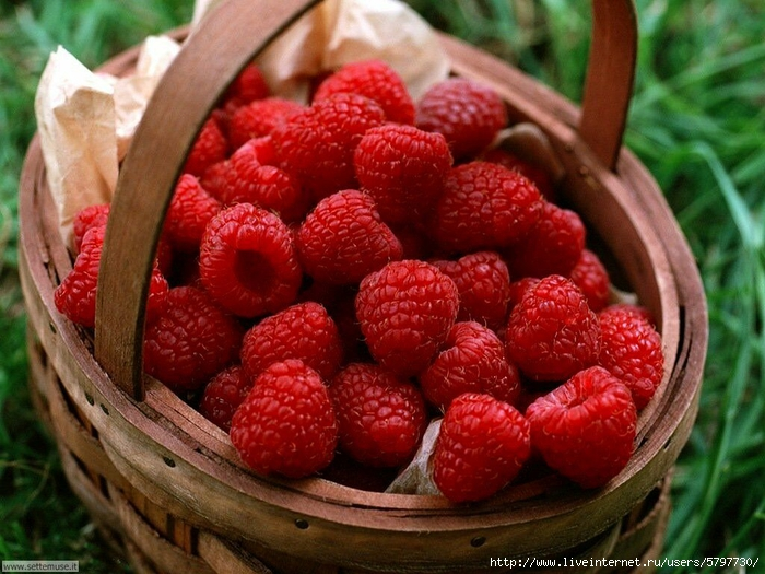 frutta_verdura_041 (700x525, 308Kb)
