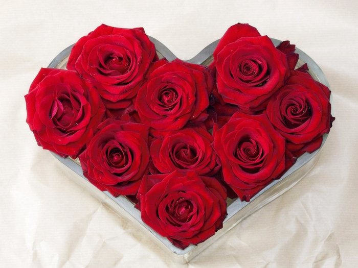 roses_214 (700x525, 362Kb)