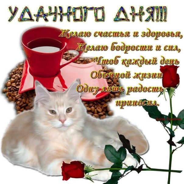 http://img0.liveinternet.ru/images/attach/c/5/123/951/123951334_66f3fd0f51807focd7dfabdaf4dac5dl.jpg