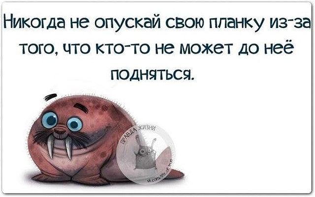 123953174_image__21_ (640x401, 133Kb)