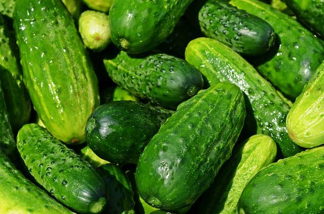 4239537_cucumbers849269_640 (640x423, 113Kb)