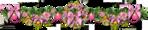 Превью 0_e8698_7548b128_XL (600x122, 162Kb)