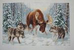 Превью ДЖ-013 Встреча в лесу (488x328, 188Kb)