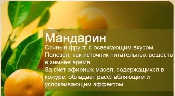 Полезные свойства фруктов (590x326, 172Kb)