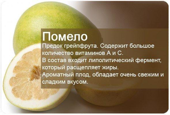 Полезные свойства фруктов8 (590x400, 185Kb)