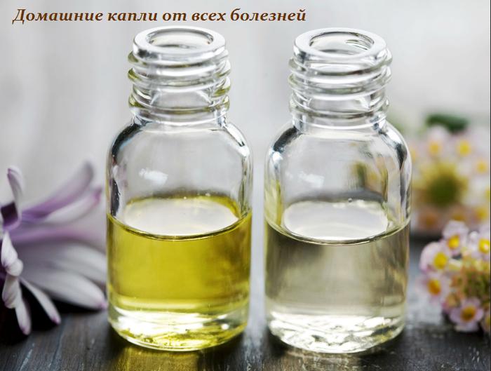 1438180634_Domashnie_kapli_ot_vseh_bolezney (700x529, 419Kb)