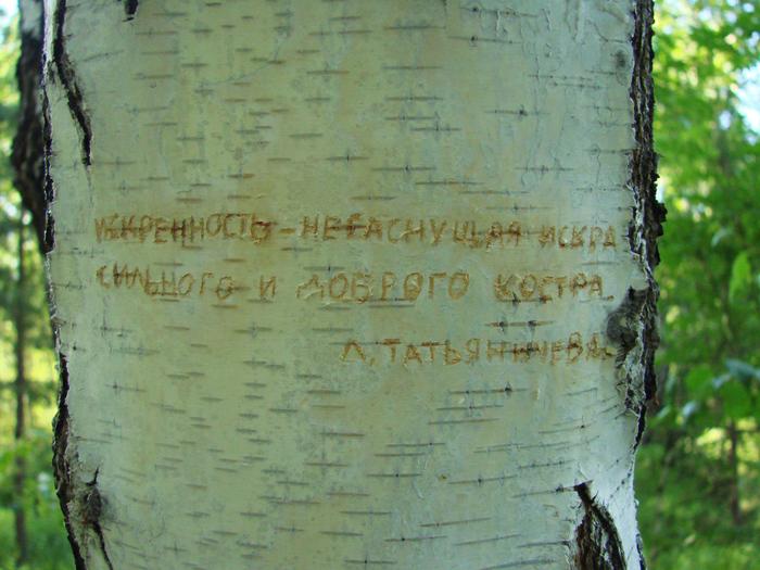 1415502_Iskrennost_negasnyshaya_iskra (700x525, 303Kb)