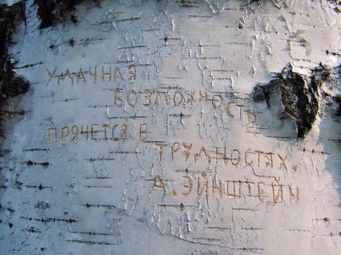 1415502_Ydachnaya_vozmojnost_prchetsya_v_trydnostyah (700x525, 279Kb)