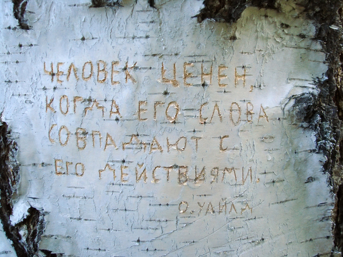 1415502_Chelovek_cenen_kogda_ego_slova (700x525, 282Kb)