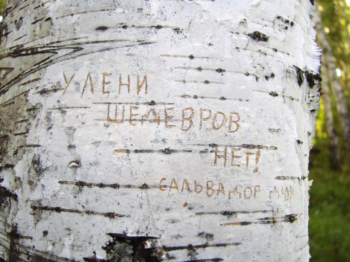 1415502_Y_leni_shedevrov_net (700x525, 347Kb)