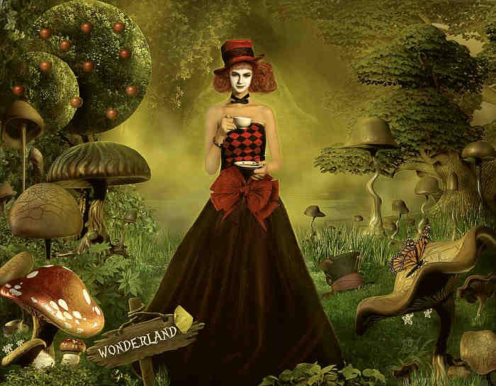 01-Wonderland (700x544, 277Kb)