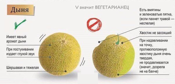 как выбираь овощи и фрукты (600x290, 224Kb)