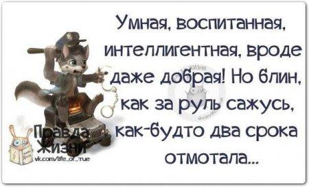 1437566781__dnoxuu2qhi (450x273, 90Kb)