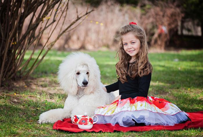 Шаблон для фотошопа - Девочка с пуделем (700x472, 352Kb)