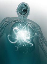 5028972_kakuskoritobmenveshestvkakuskoritmetabolizm (200x268, 14Kb)