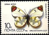 YtSU 5287 ������� ����� 1986 Butterflies ������ ����� Sooty orange-tip (Zegris eupheme) (161x115, 20Kb)