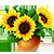 5987008_Flower6 (50x50, 7Kb)