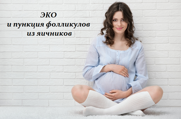 1460821387_YEKO_i_punkciya_follikulov_iz_yaichnikov (700x459, 420Kb)