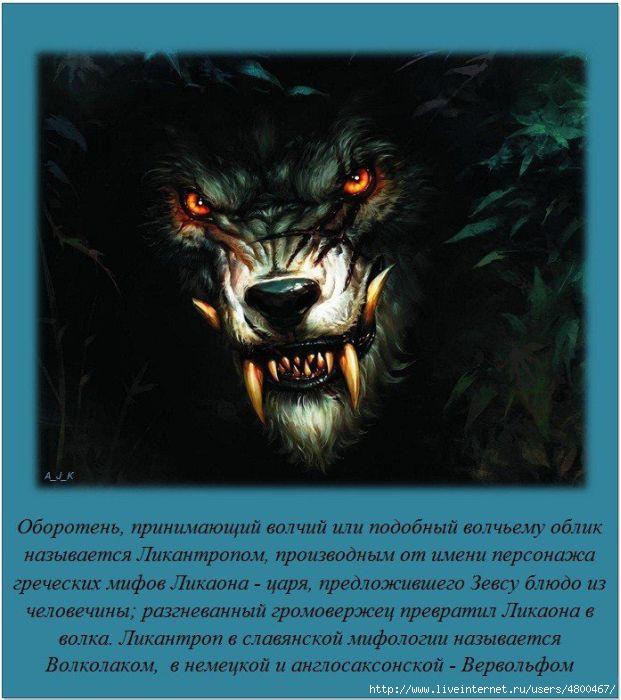 �����/4800467_1331542239_fact1103201215 (621x700, 178Kb)