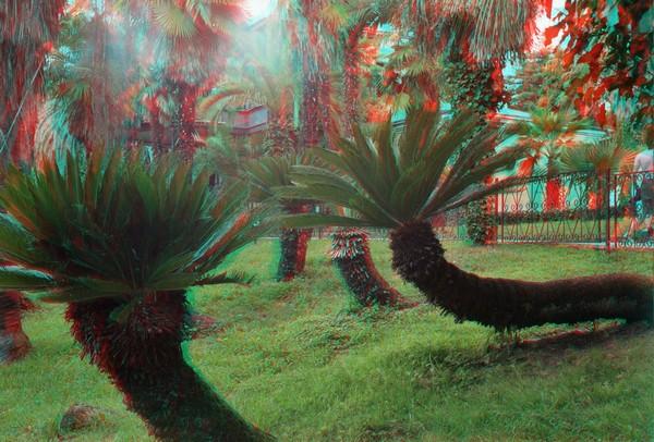 Красивые пейзажи - стерео картинки анаглиф 36 (600x406, 99Kb)