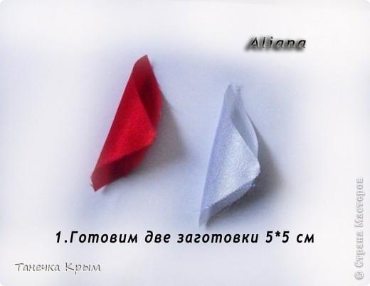 mk_1 (520x403, 28Kb)